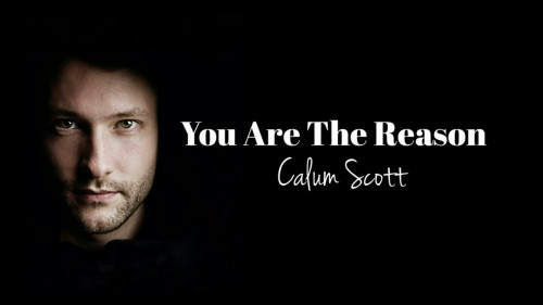 You Are The Reason – Calum Scott